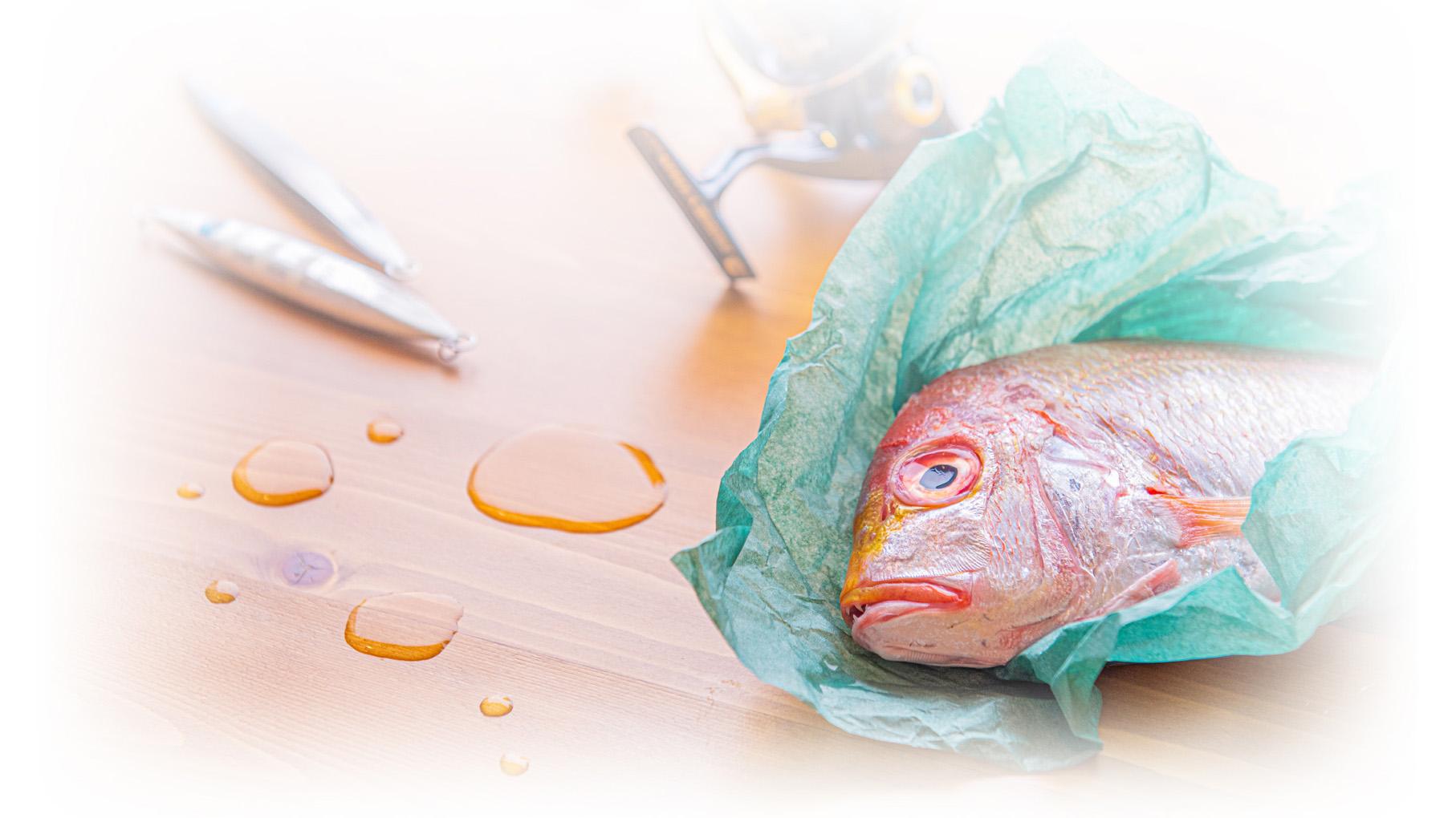 【魚保存用 保湿&熟成シート】 つつめる君